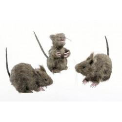 Ratas Peludas ,3 modelos.