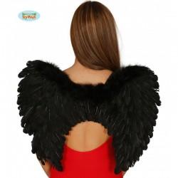 Alas negras de plumas,55 x 45cm